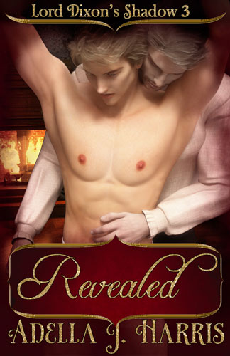 cover of Revealed Lord Dixon's Shadows book 3 by Adella J Harris